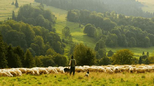 Farmers tax property